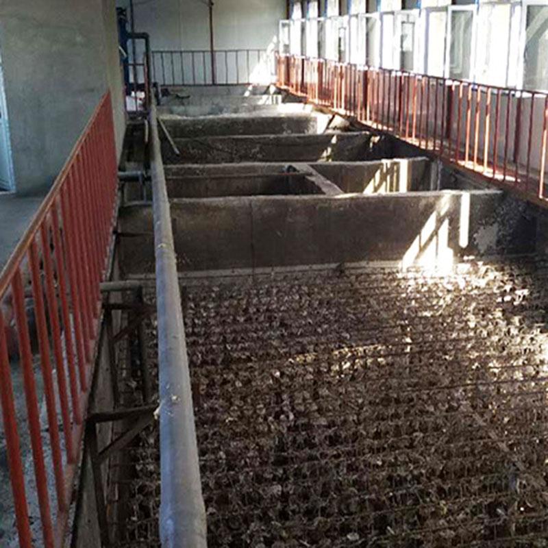 江西赣州养猪场污水处理设备案例